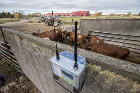 Tekniska hjälpmedel för ökad djurvälfärd
