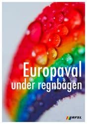 Val till Europaparlamentet: stora skillnader mellan svenska partiers hbtq-politik