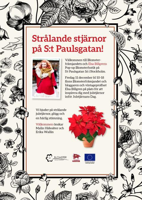 Strålande julstjärnor med Elsa Billgren och Blomsterfrämjandet