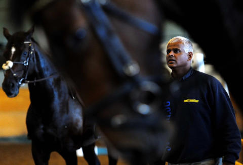 Tomas Hammar, Show Director Helsingborg Horse Week 2015