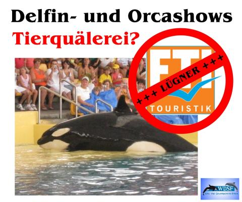 "Tierschutzorganisation WDSF entzieht FTI Touristik das Prädikat ""delfinfreundlich"""