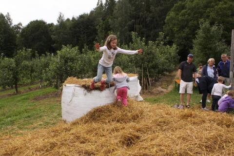 Rekordmange gårder å besøke