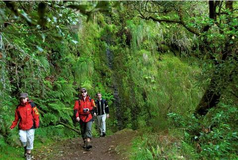 Madeira vandringsleder