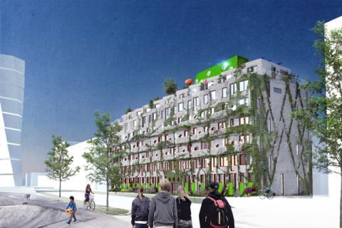 Banbrytande bostäder får supermiljököket Miinus - Ekologi och design fällde avgörandet