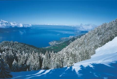 Blick auf Genfersee aus der Zahnradbahn zum Rochers-de-Naye