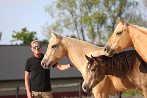 """Sommarhästshow """"Open Home Training"""" med Tobbe Larsson och Sveriges populära häst """"Nicke"""" som firar 20 år!"""