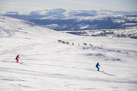 Ny flyglinje till Åre & Vemdalen ger skjuts åt brittisk skidturism – ökning med 35 %