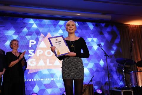 Vinnare Parasportgalan 2017