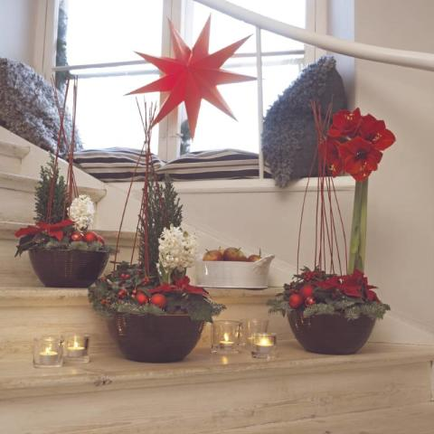 Julen-en blomstrande högtid