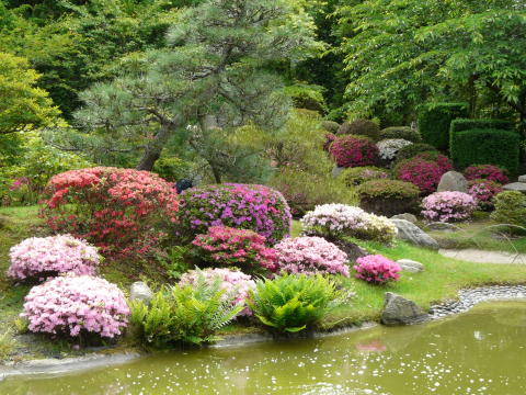 Bonsaigarten Ferch