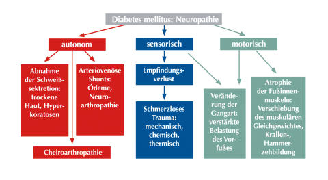 Die Entstehung eines Diabetischen Fußsyndroms