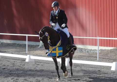 Hästfest i Roslagen när årets Distriktsmästare i Hoppning och Dressyr för ponny och häst samt Paradressyr ska koras