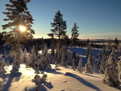 Kristallklar, wunderschön! Schwedisch Lappland.
