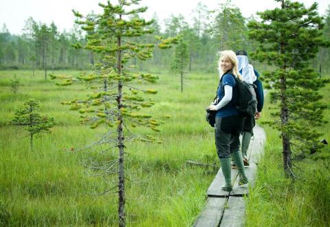 Påminnelse till medlemmar i Gold of Lapland - Hållbarhetsenkät