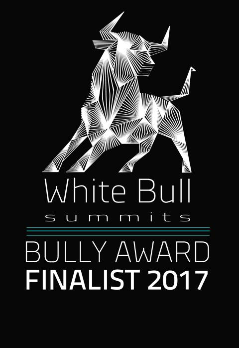 TOP 60 on 2017 Bully Awards