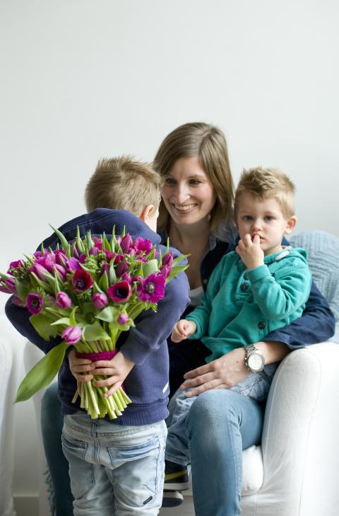 Gör någon glad med svenska tulpaner!