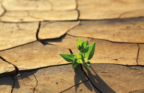 Torka slår först mot vattendragen, sedan jordbruket