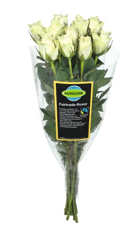 Fairtrade-märkt ros Fairglobe
