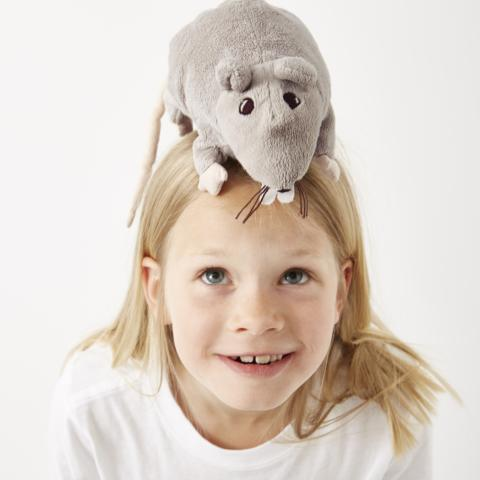 Mus og rotter er mest populære i IKEA