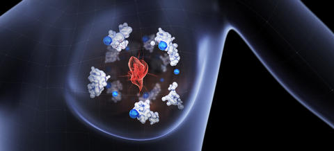 Cancer cells spread using a copper-binding protein