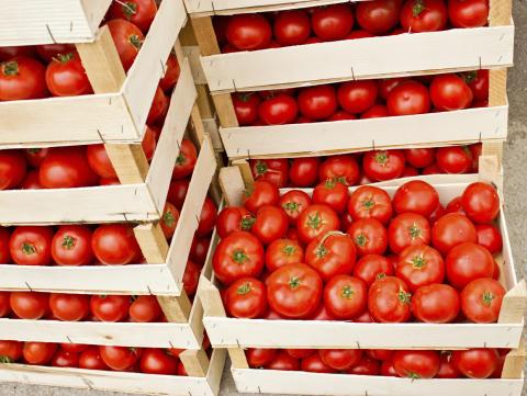 Närodlad tomat inte alltid den grönaste