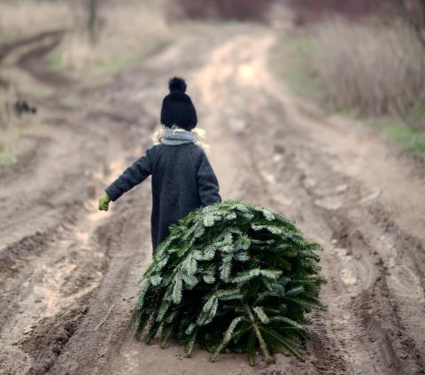 Ensam julgran på Sveriges mest tillgängliga hotell, Quality Hotel Winn i Haninge söker julklappar!