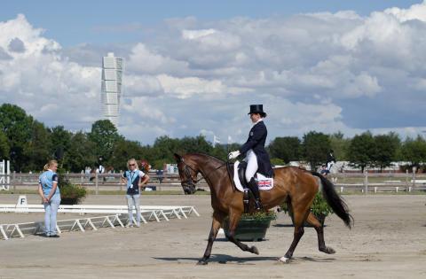 Tio dagars hästfest på Ribersborg