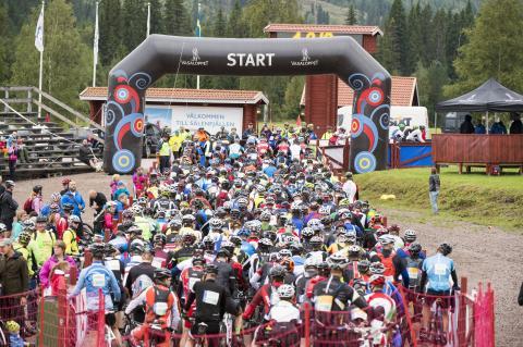 Sveriges Television sänder i år ännu mer från Cykelvasan