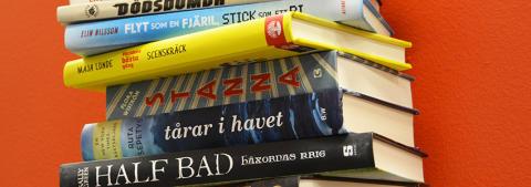 Verklighetsflykt, normer och läsfrämjeri på Litteralund