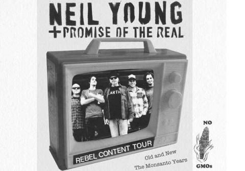 Neil Young till Dalhalla!