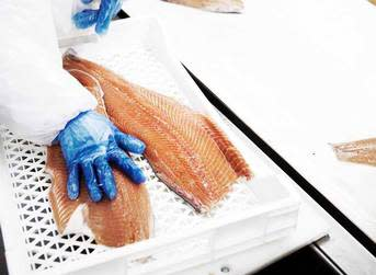 NASF blog: More consolidation coming in Chile salmon