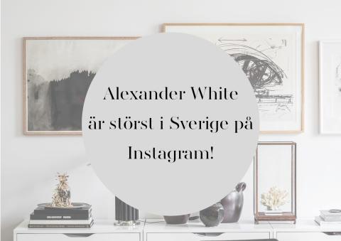 Alexander Whites instagramkonto är störst i Sverige
