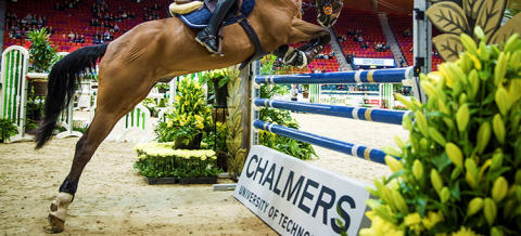The force of the horses' push-off and landing is measured during the Gothenburg Horse Show this year.