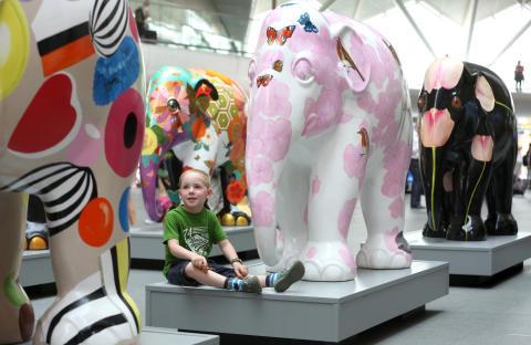 ELEPHANT PARADE KICKS OFF NATIONAL TOUR TODAY
