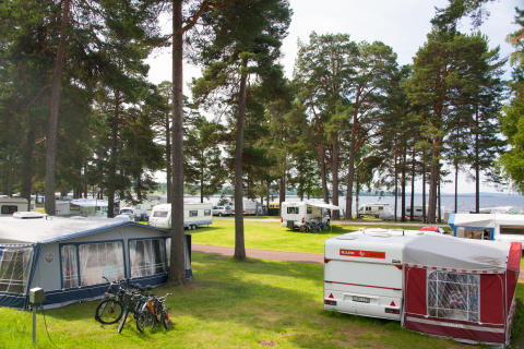Sommarcamping