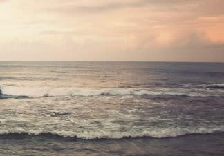 Stopp för laxfiske i Bottenviken