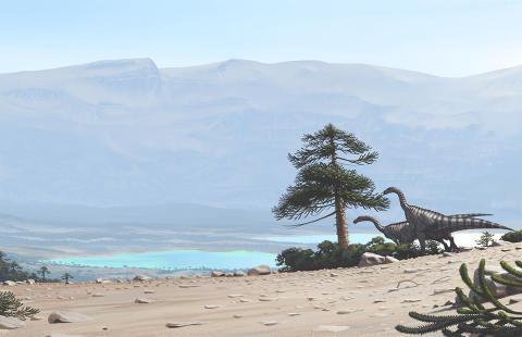 Plateosaurusen åt växter.