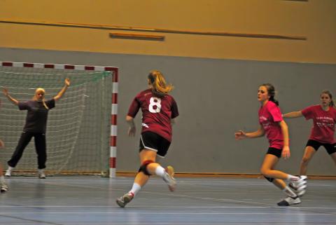Widénskas handbollstjejer är VM-klara_2