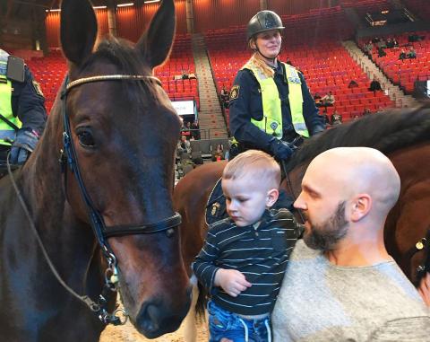 Hela familjens dag på Gothenburg Horse Show