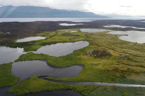 Post-glaciala sjöar i Stordalen, Abisko. Foto: Jo Uhlbäck.
