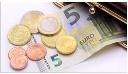 Exploring statutory minimum wages in the EU