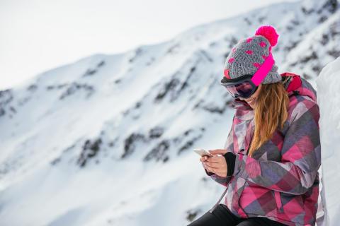 Danskerne gik data-amok i vinterferien
