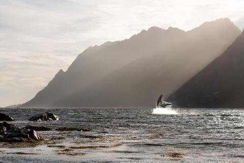 Chasing the Elements – att finna vägen tillbaka till naturen