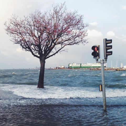 Luonnonilmiöt aiheuttavat kymmenien miljardien eurojen vakuutuskorvaukset vuosittain maailmanlaajuisesti