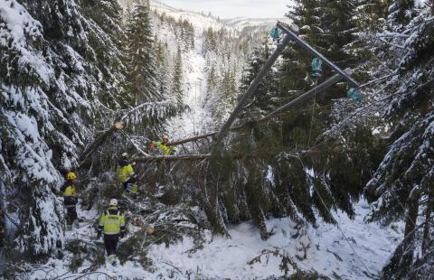 Det var store ødeleggelser på strømlinjene på Agder etter det som betraktes som et spesielt værfenomen, lørdag 5. november 2016