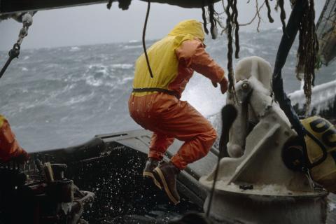 Sjarkfiskere