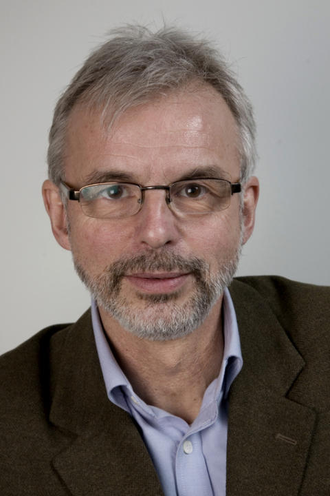 Professor Harald Ellingsen (NTNU)