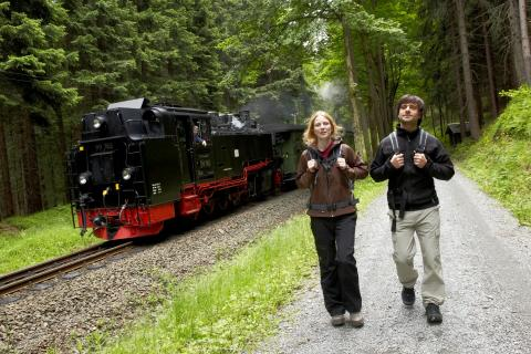 Unmittelbar am Kammweg- die dampfenden Rösser der Preßnitztal- & Fichtelbergbahn