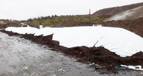 SVU-rapport om ammoniakhygienisering för säker användning av slam i odling  (avlopp och miljö)