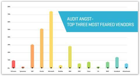 Undersoegelse afsloerer frygt software-audits
